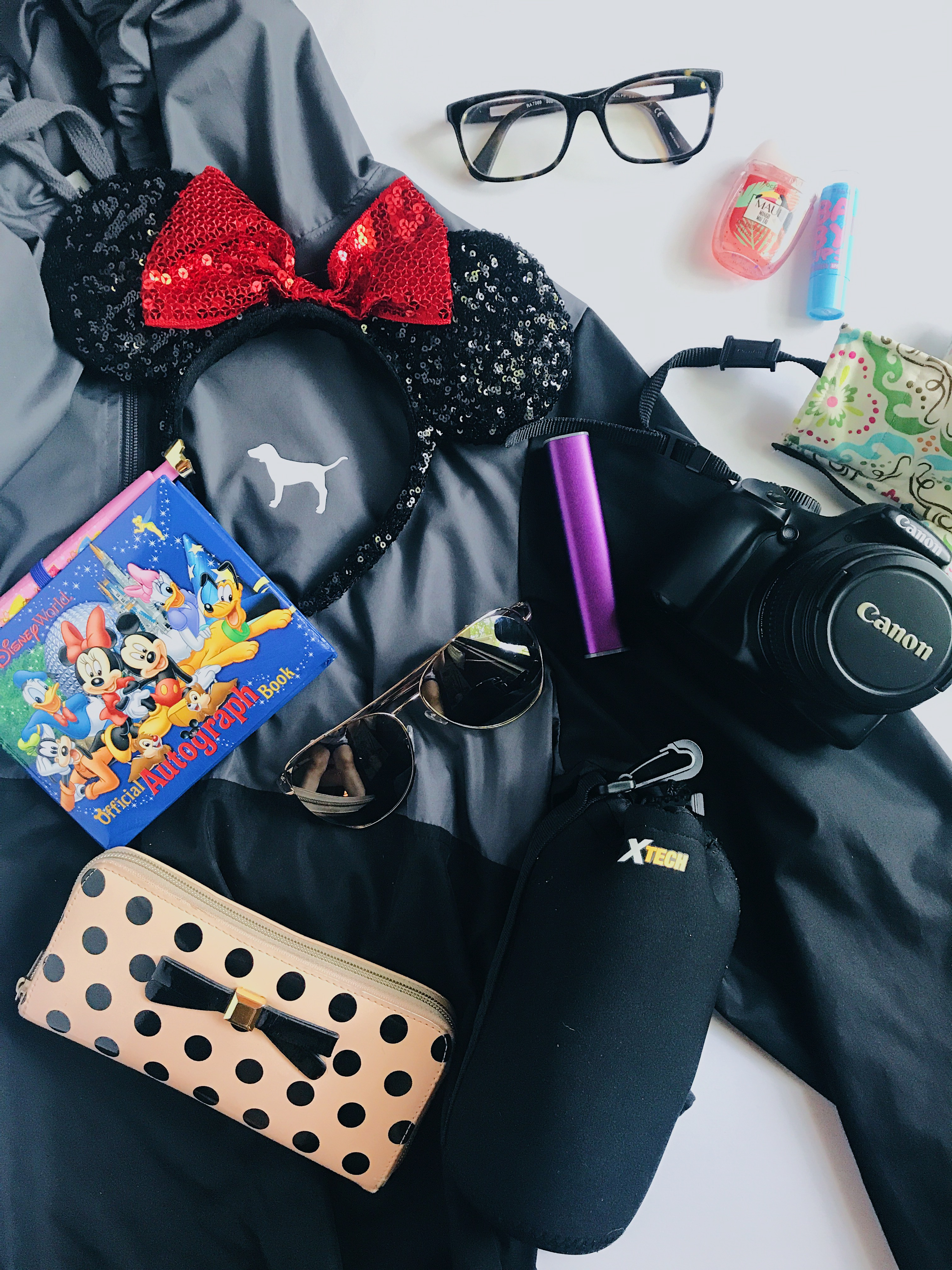 what to pack in your disney park bag